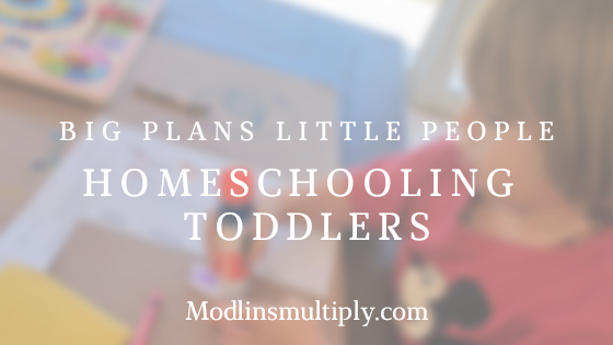 Big Plans Little People – Homeschooling Toddlers
